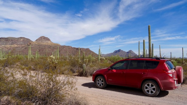 Organ Pipe Cactus National Park - 41.jpg