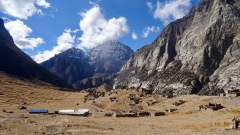 Manaslu, Tsum Valley, Nar-Phu, and Annapurna - 401